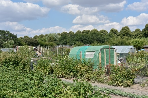 Caslefields Allotments Shrewsbury