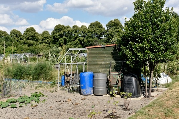 Castlefields Allotments, Shrewsbury 2018