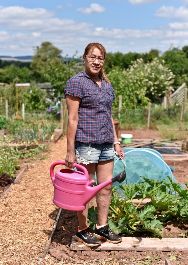 Ginhall Lane Allotments, Leominster 2018